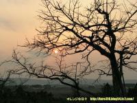 IMG_1603-3.jpg
