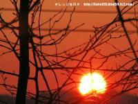 IMG_1709-3.jpg