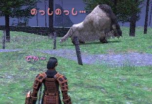 でか羊はっけん