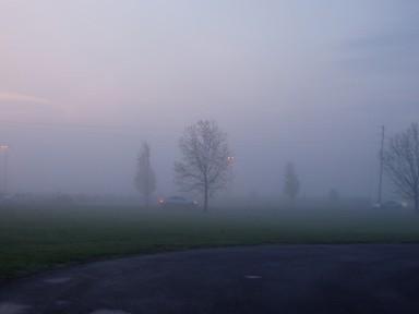 mist1_ks.jpg
