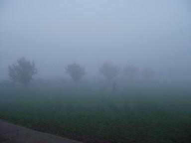 mist3_ks.jpg
