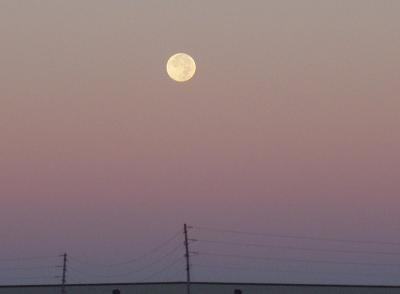 これほど近い月は