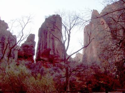 Zionの風景その1