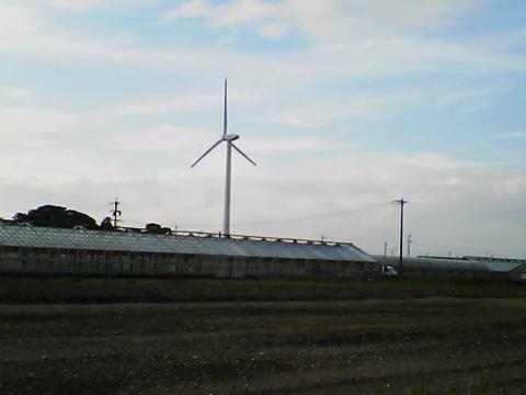 20050910-3.jpg