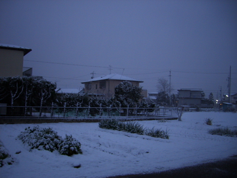 20051213-1.jpg