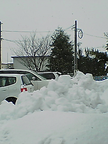 20051227-1.jpg