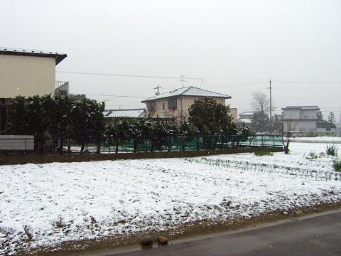 20060330-1.jpg