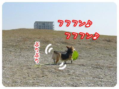 070310_2.jpg