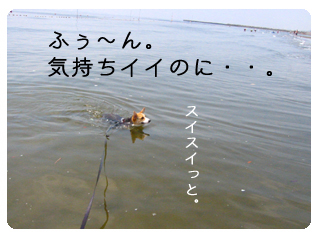 IMG_2613.jpg