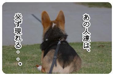 f9ed.jpg