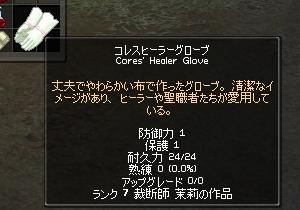 銘入コレスヒーラーグローブ