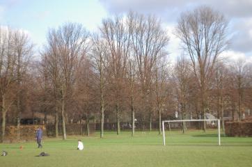 20070207_05.jpg