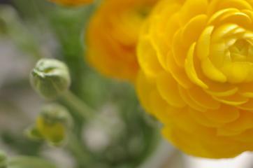 20070503_02.jpg