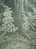 05-03-01_19-06.jpg