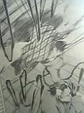 05-03-19_10-20.jpg