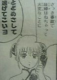 8_2005_2.jpg