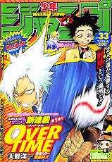 cover33_2006.jpg