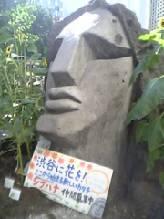 tokyomoyai.jpg