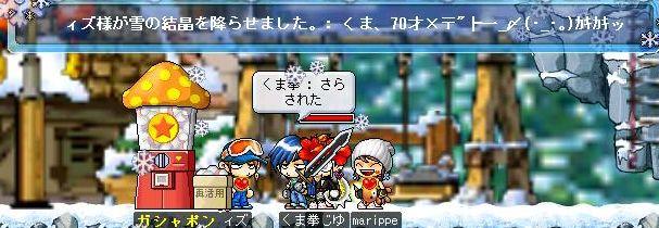 Maple004141.jpg