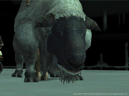 羊です…羊です…