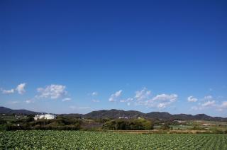 20070312 塔の台 武山