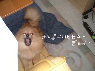 kowaiyomoco2.jpg