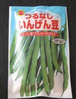 green-bean1.jpg