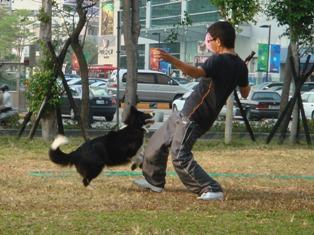 ジャンプ練習