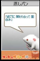 20060212022203.jpg