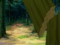 大木を破壊