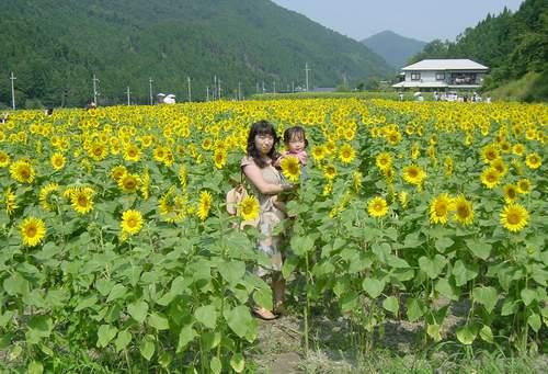 2005.8.5 ひまわり畑でのん&ママ.JPG