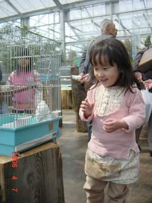 4.7 花鳥園にてインコを見て.JPG