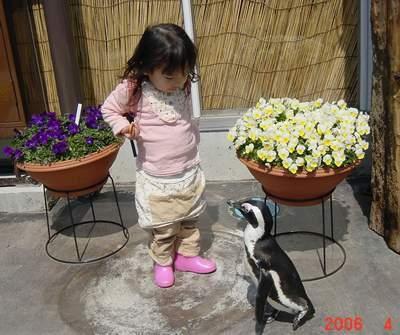 4.7 花鳥園にて ペンギンさんと.JPG