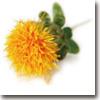 flower17_100b.jpg