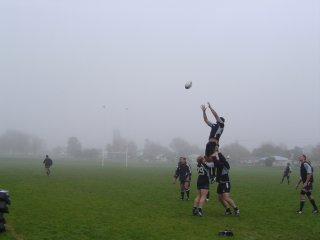 lineout01.jpg