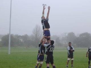 lineout02.jpg
