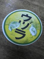 20061024011821.jpg