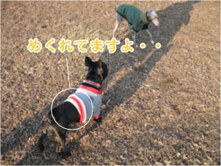2005.11.25-1.jpg