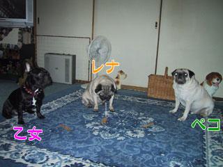 2005.8.11-5.jpg