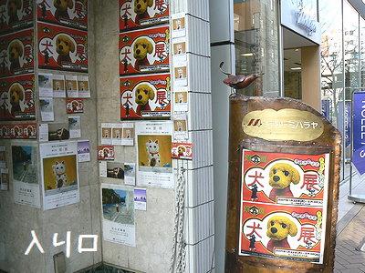 ミハラヤ入り口