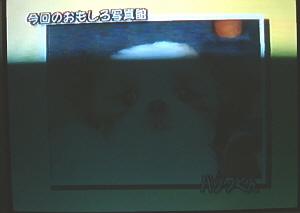 d050925-1.jpg