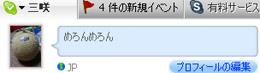 skype_.jpg