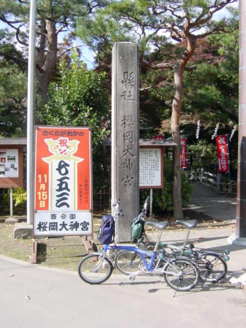 DSC00006sensakur.jpg