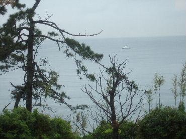2007_0526okinawa0235.jpg
