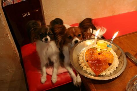 ケーキ待ち