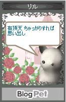 ria_haiku2.jpg