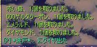 11-08-hato2.jpg