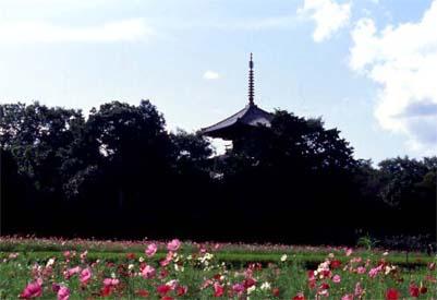 hokiji