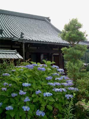 mukuhara