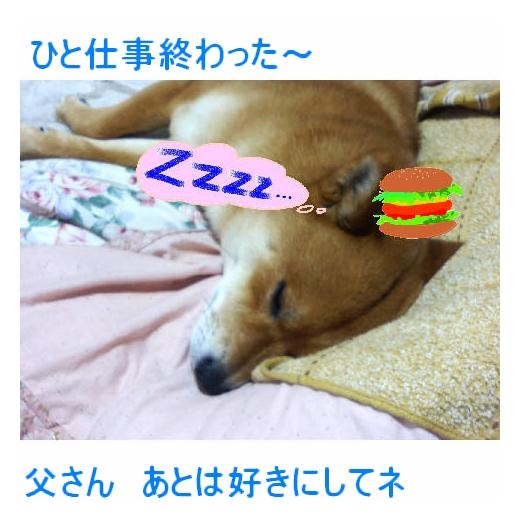 20070416164735.jpg
